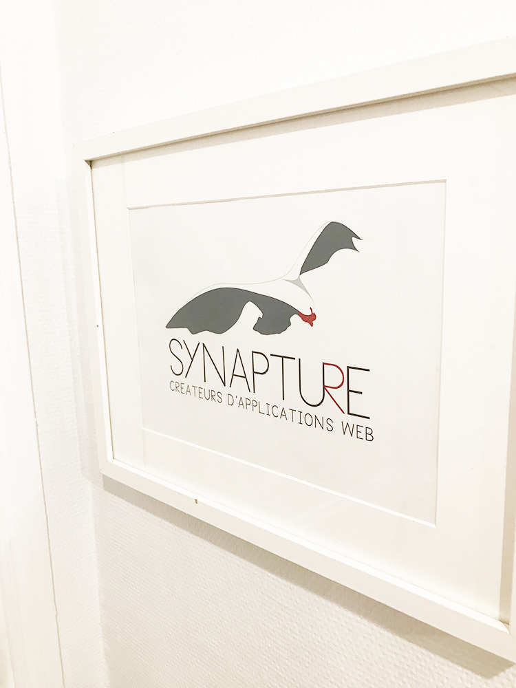 Synapture GED