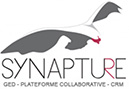 Synapture